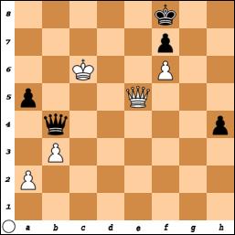 schaakpuzzel_x2